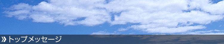 GJMS ジージェーエムエス 大型バイク リアサスペンション 改造【GP6-RT-HL】45°ローター スラントタイプタンク リアショック カラー(画像B部分):ゴールド カラー(画像C部分):レッド 二輪車 体重:70kg Fighter 150:ウェビック 店 Fighter 150 GJMS ジージェーエムエス BS-GP6-RT-HL-FT+A-BK+B-GD+C-RD+D-BK+E-BK+W70